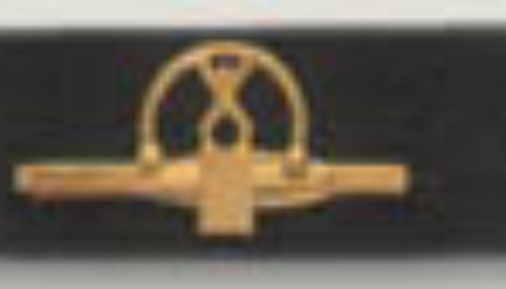 Krawattennadel (vergoldet)-184